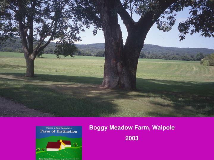 Boggy Meadow Farm, Walpole
