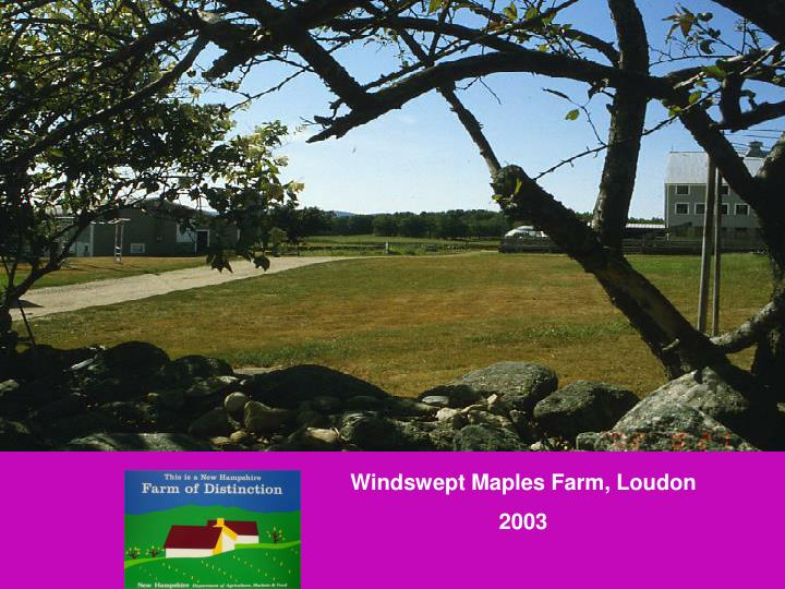 Windswept Maples Farm, Loudon