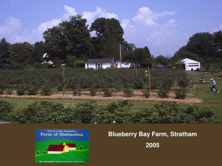 Blueberry Bay Farm, Stratham