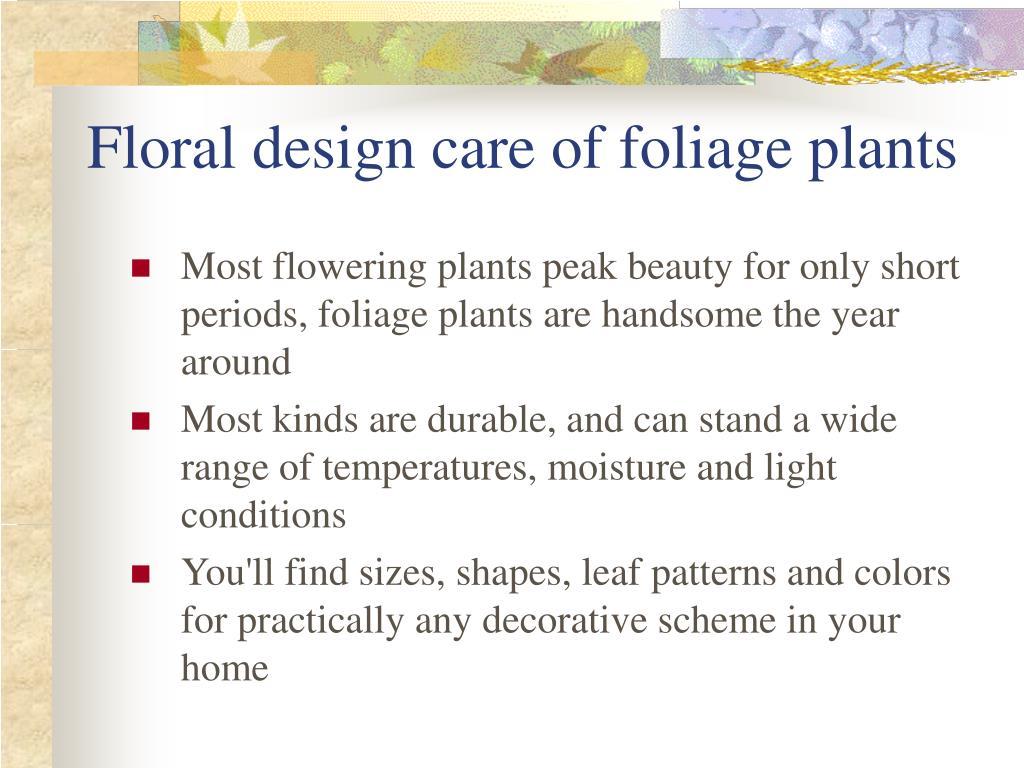 Floral design care of foliage plants