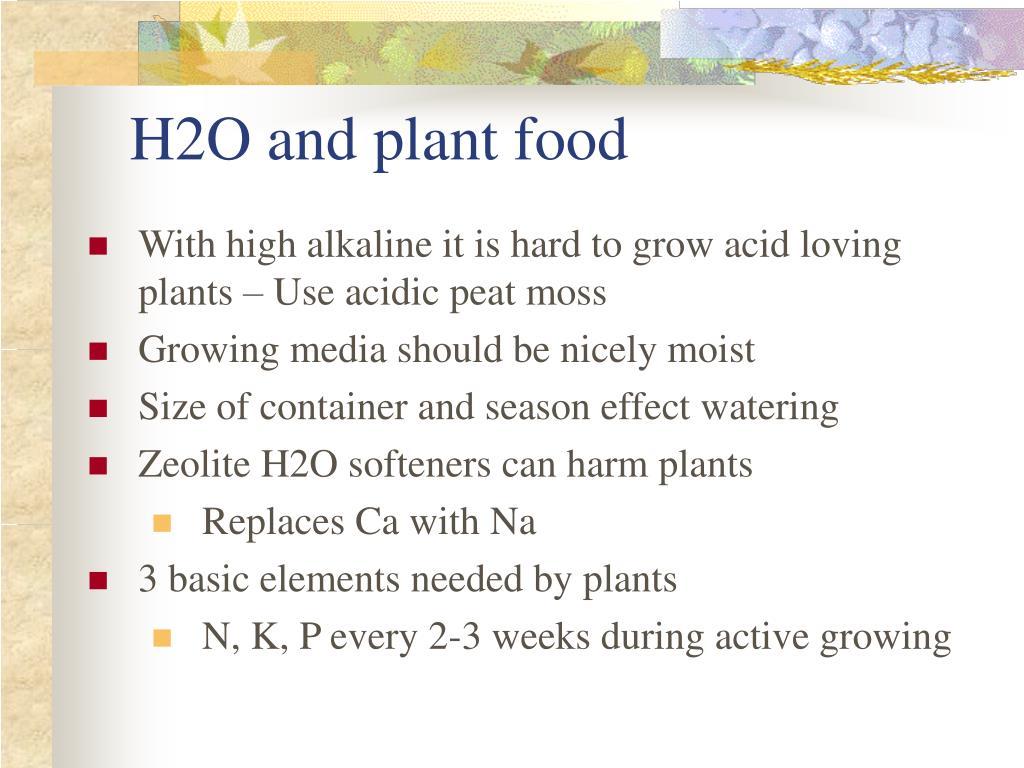 H2O and plant food