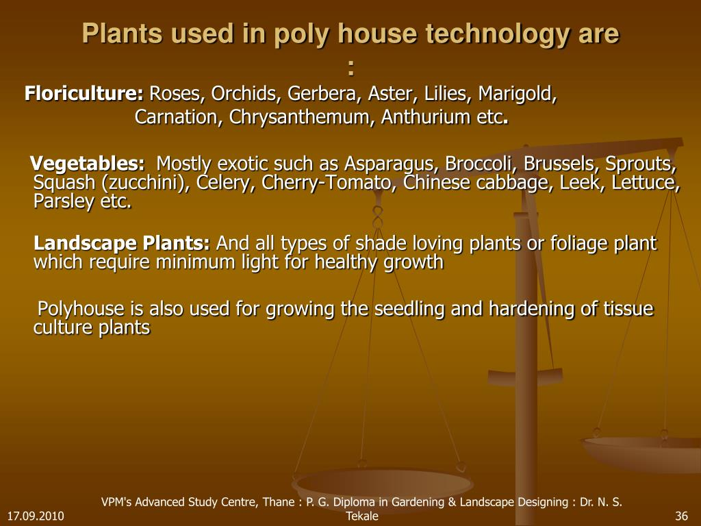 Plants used in poly house technology are