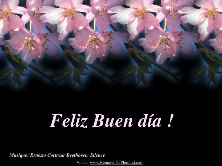 Feliz Buen día !