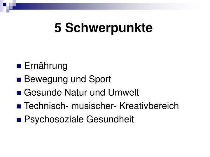 5 Schwerpunkte