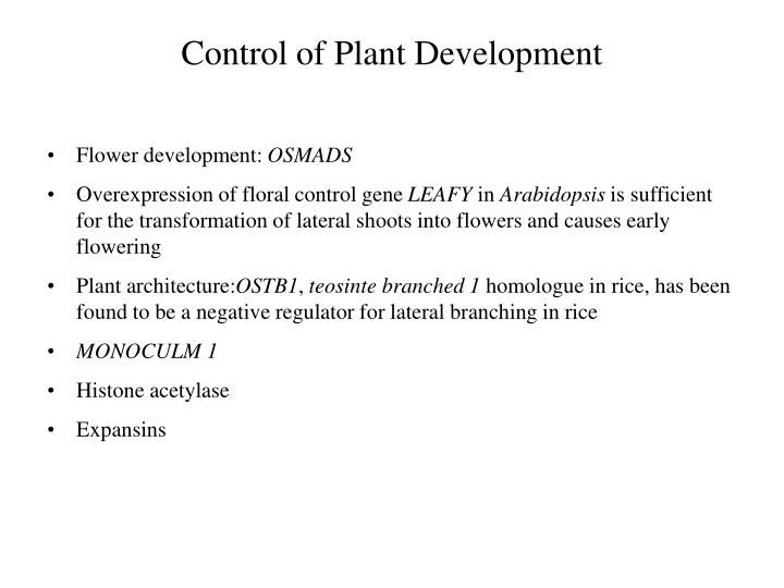 Control of Plant Development