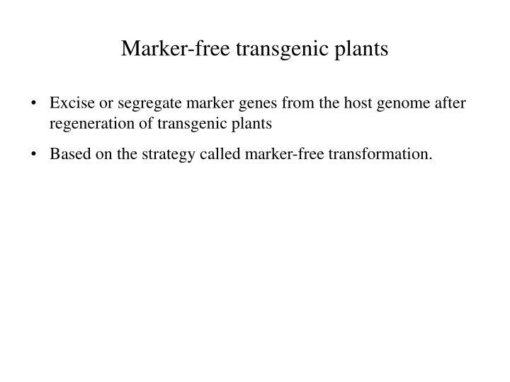 Marker-free transgenic plants