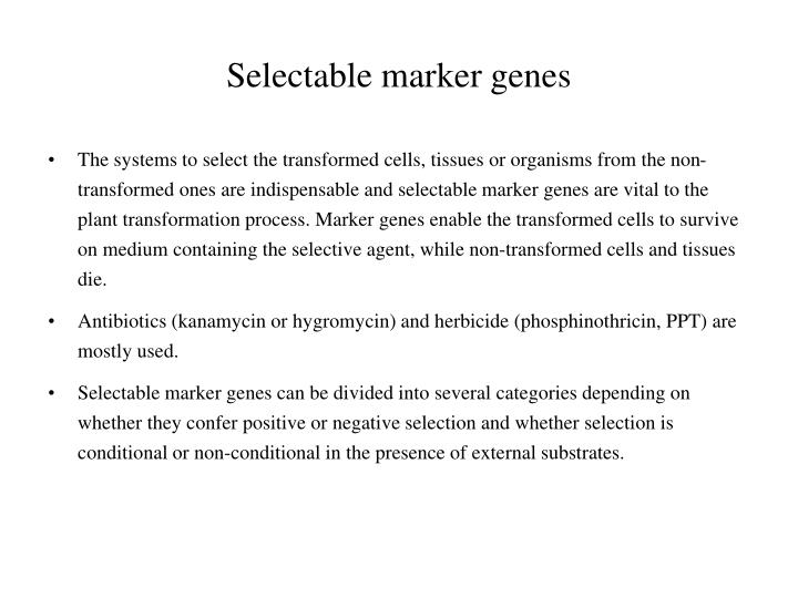 Selectable marker genes