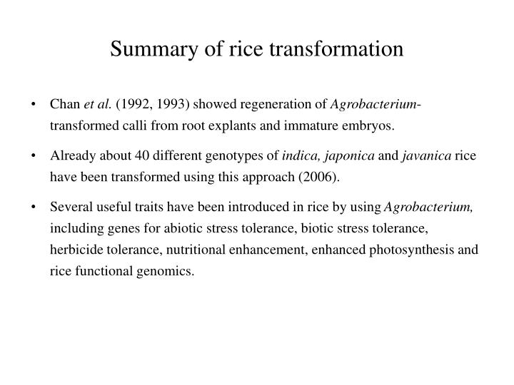 Summary of rice transformation