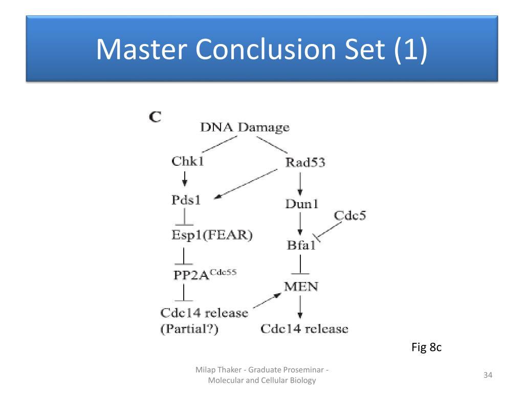Master Conclusion Set (1)