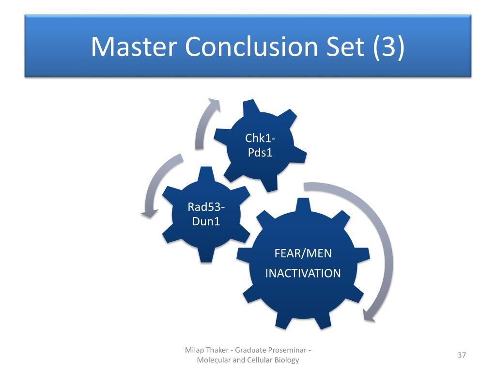 Master Conclusion Set (3)