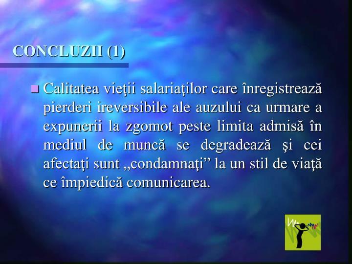 CONCLUZII (1)