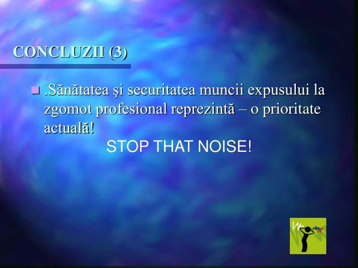 CONCLUZII (3)