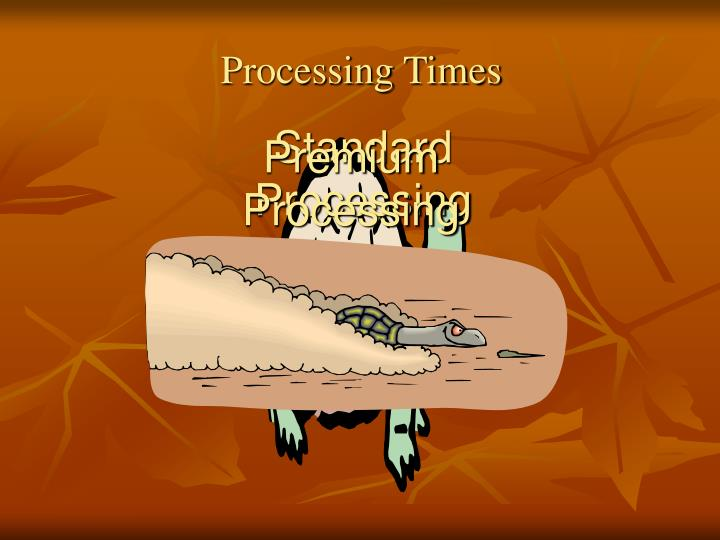 Standard Processing