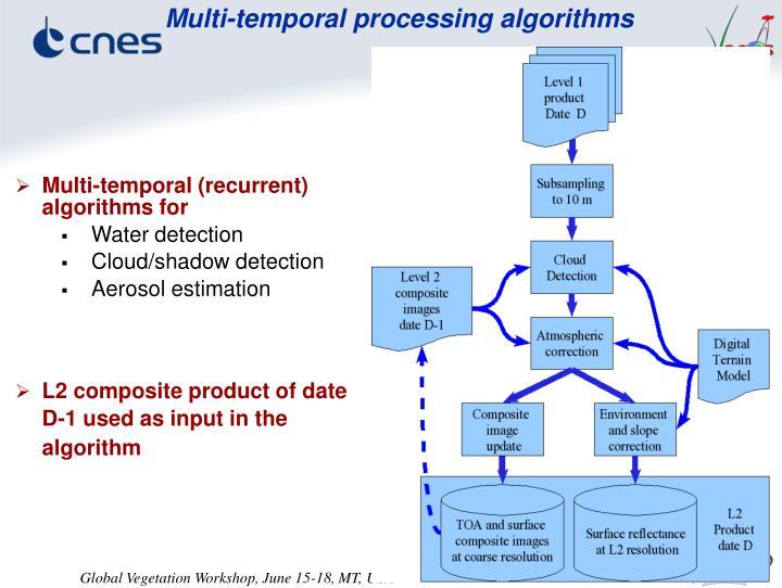 Multi-temporal processing algorithms