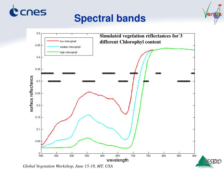 Spectral bands