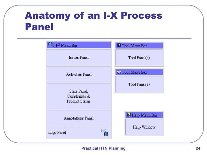 Anatomy of an I-X Process Panel