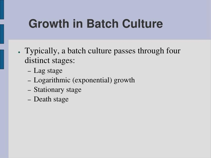 Growth in Batch Culture