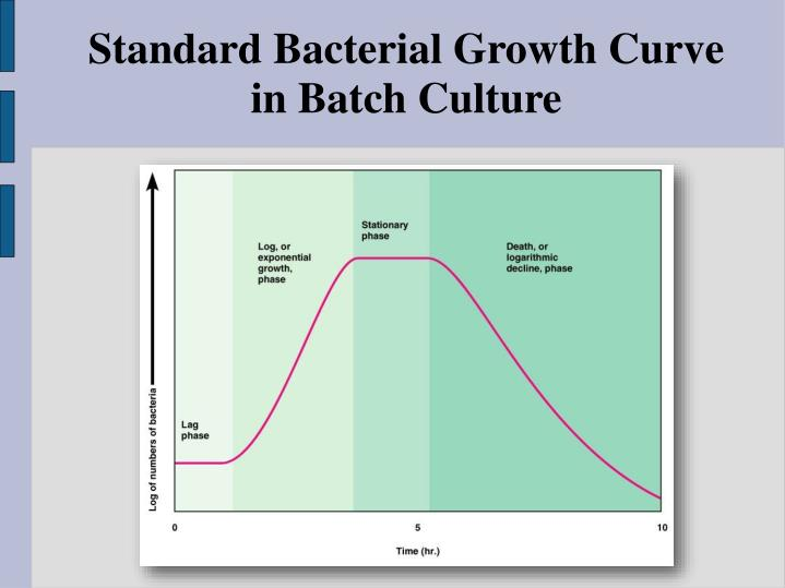 Standard Bacterial Growth Curve in