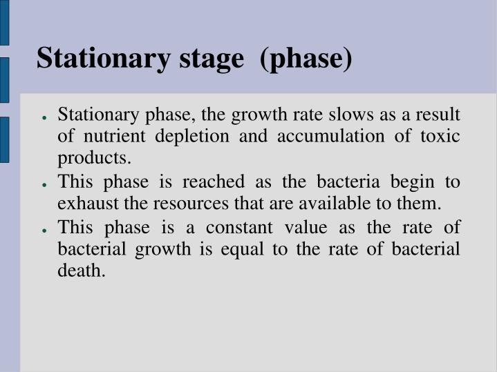 Stationary stage  (phase)
