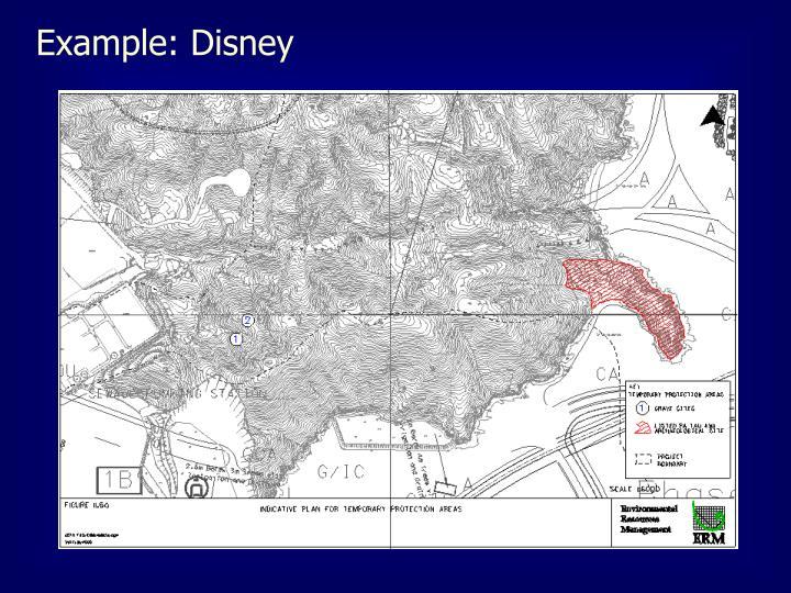 Example: Disney