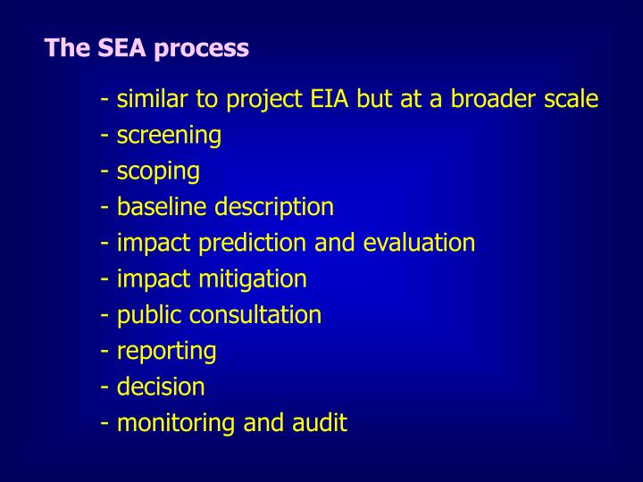 The SEA process