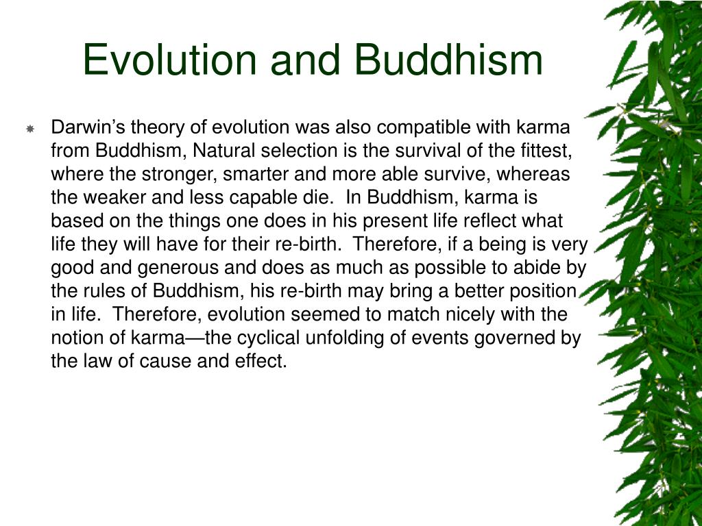 Evolution and Buddhism