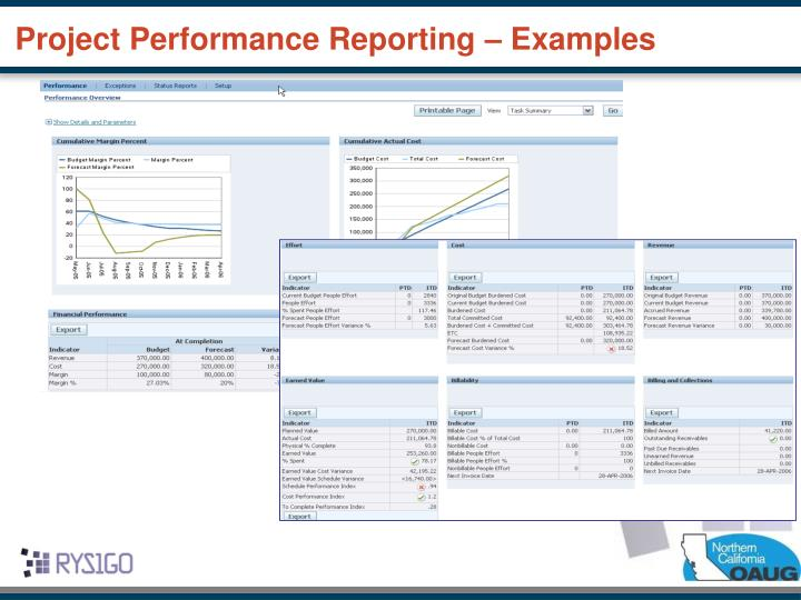 Project Performance Reporting – Examples