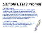 sample essay prompt