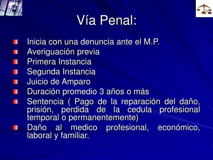 Vía Penal: