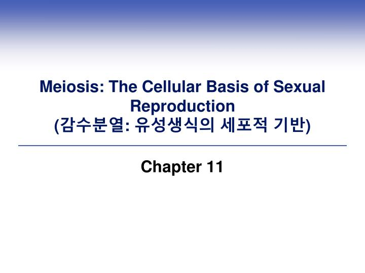 Meiosis the cellular basis of sexual reproduction