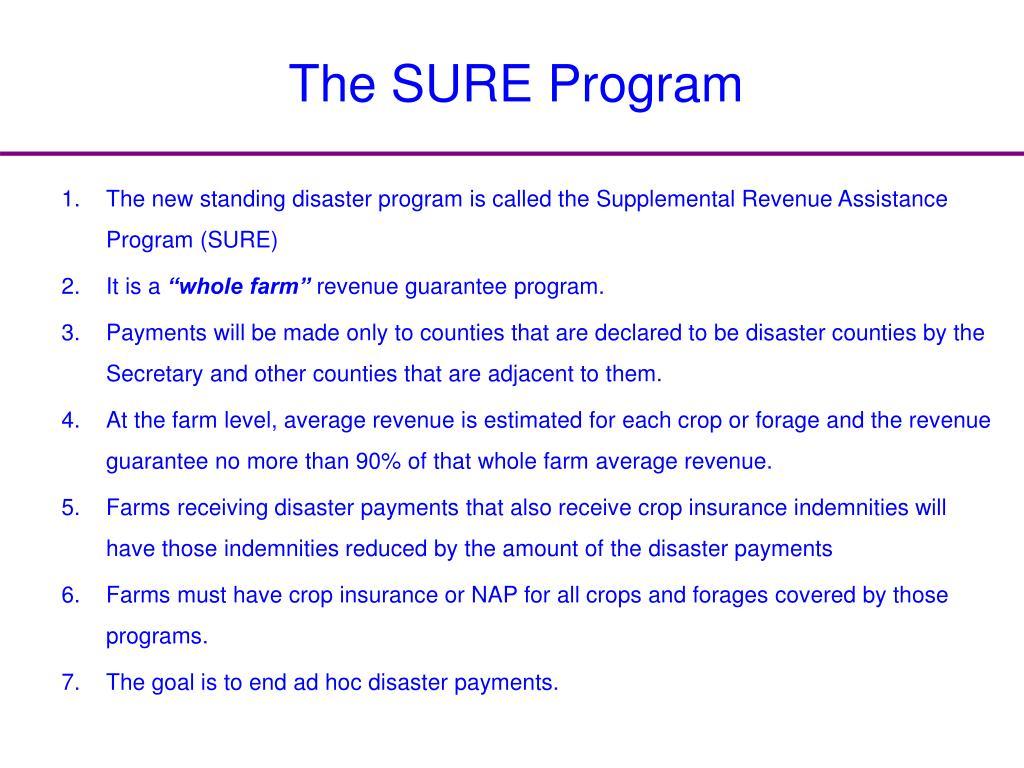 The SURE Program