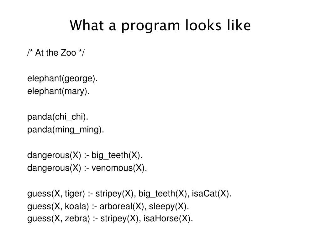 What a program looks like