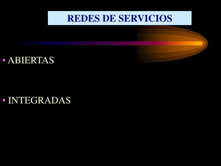 REDES DE SERVICIOS