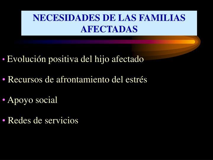 NECESIDADES DE LAS FAMILIAS AFECTADAS