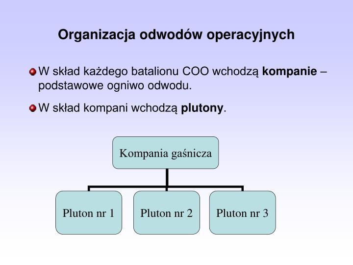 Organizacja odwodw operacyjnych