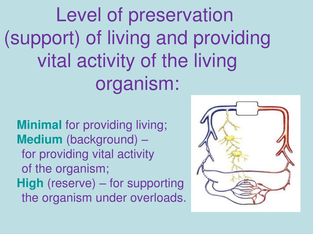 Level of preservation (support) of living and providing vital activity of the living organism: