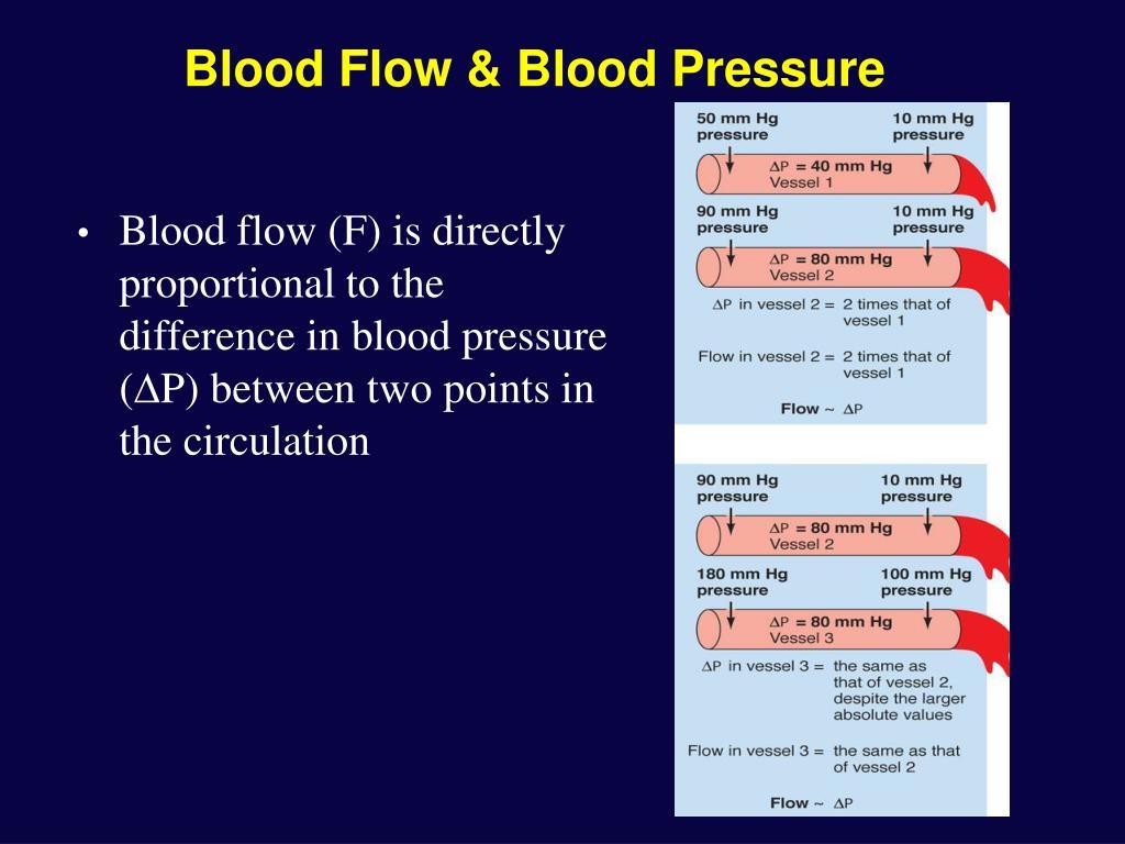 Blood Flow & Blood Pressure