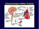 chemoreceptor reflex control