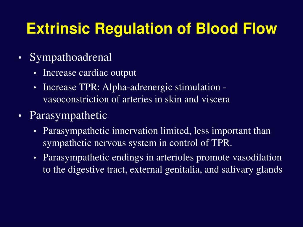 Extrinsic Regulation of Blood Flow