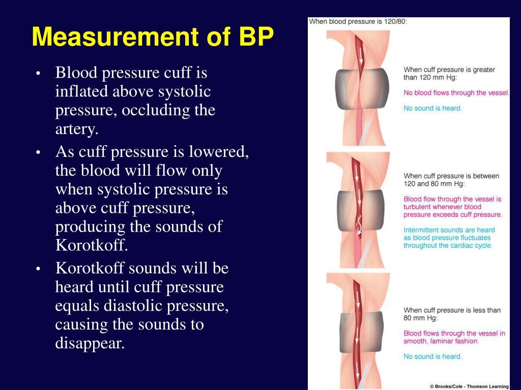 Measurement of BP
