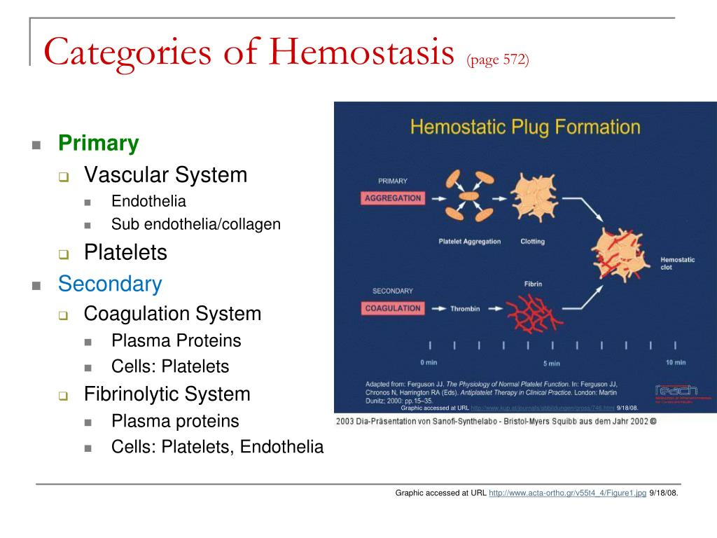 Categories of Hemostasis