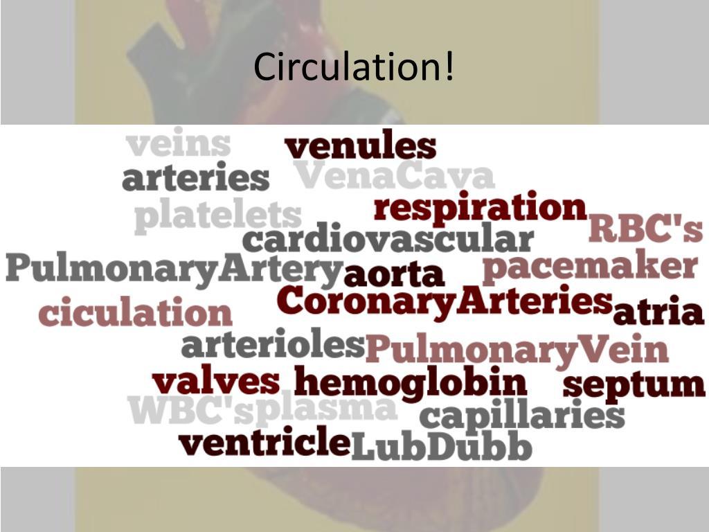 Circulation!
