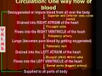 circulation one way flow of blood