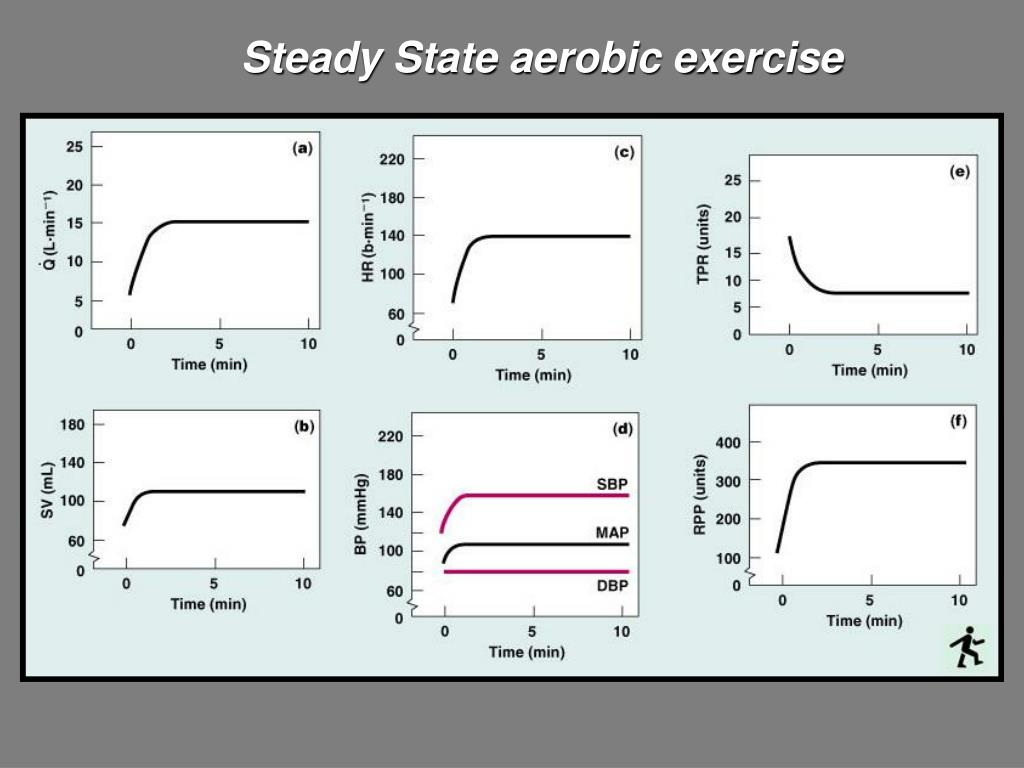 Steady State aerobic exercise