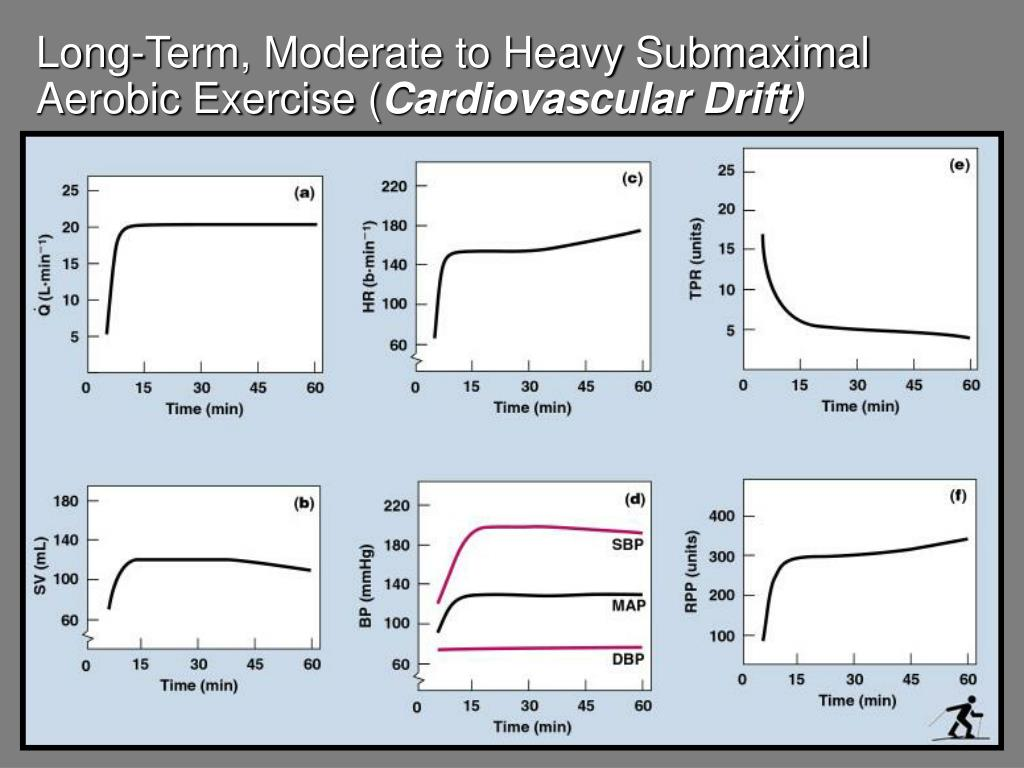 Long-Term, Moderate to Heavy Submaximal Aerobic Exercise (