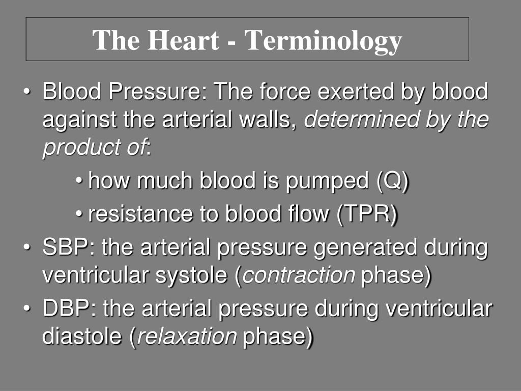 The Heart - Terminology