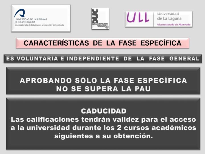 CARACTERÍSTICAS  DE  LA  FASE  ESPECÍFICA