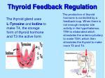 thyroid feedback regulation