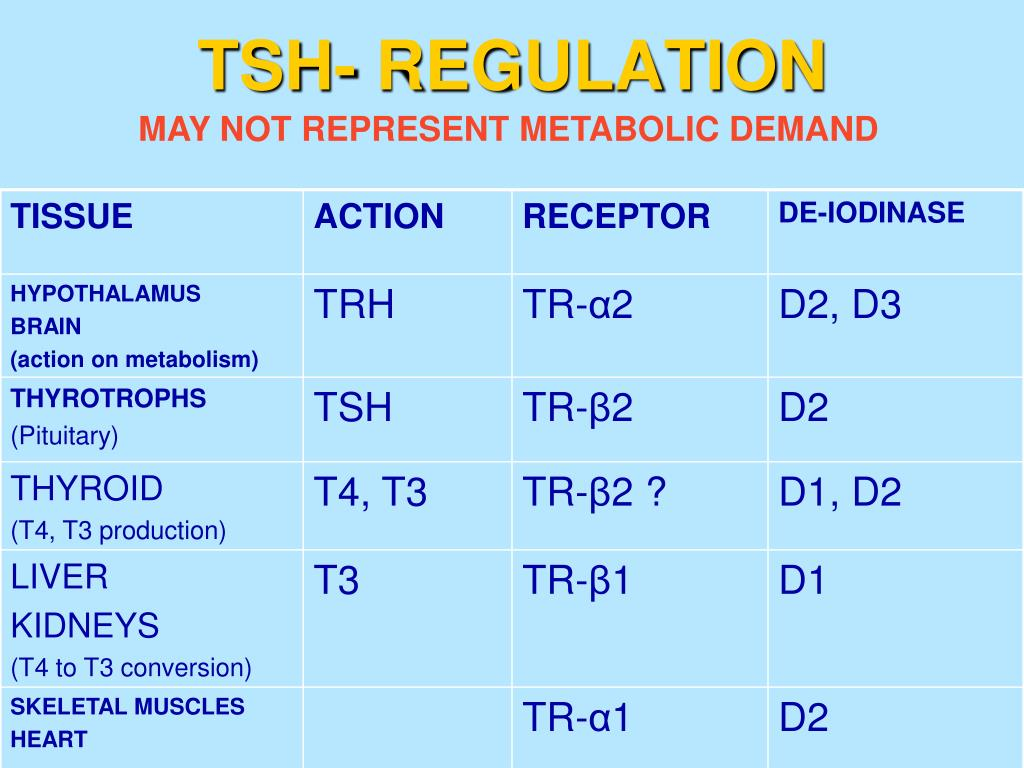 TSH- REGULATION