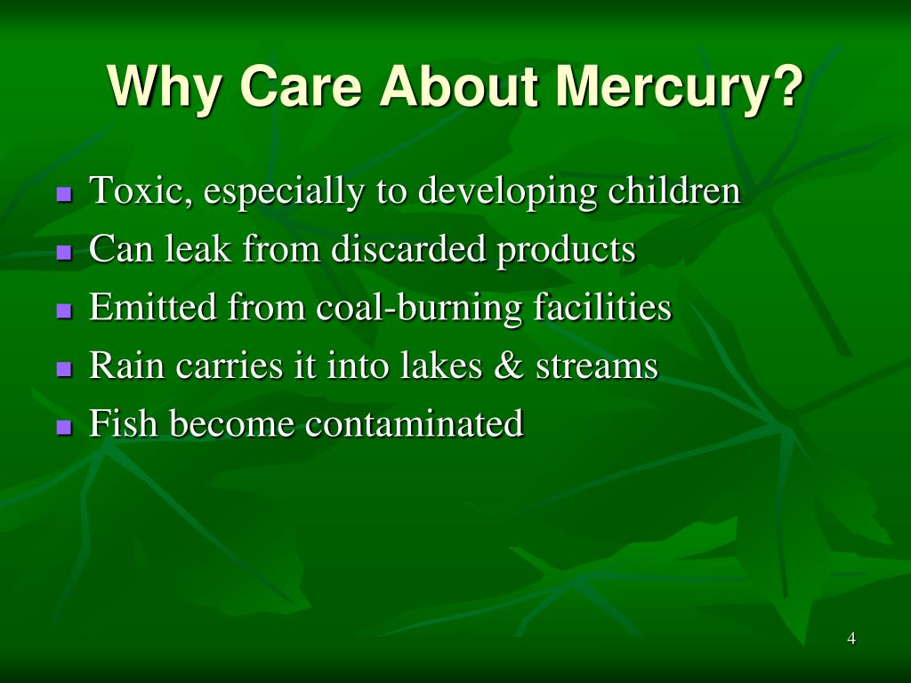 Why Care About Mercury?